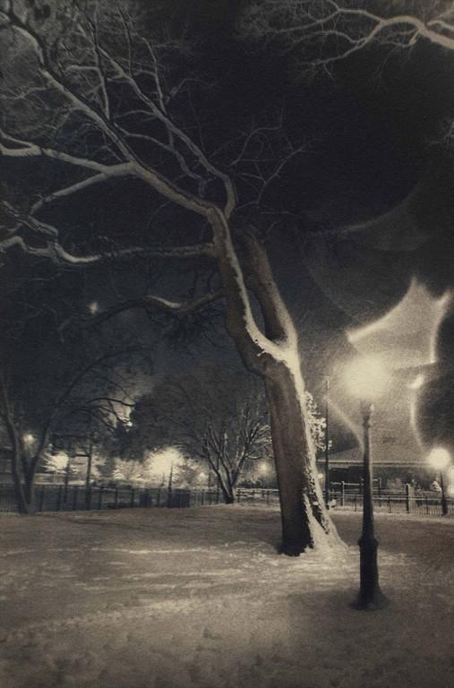 McKinley Park #1