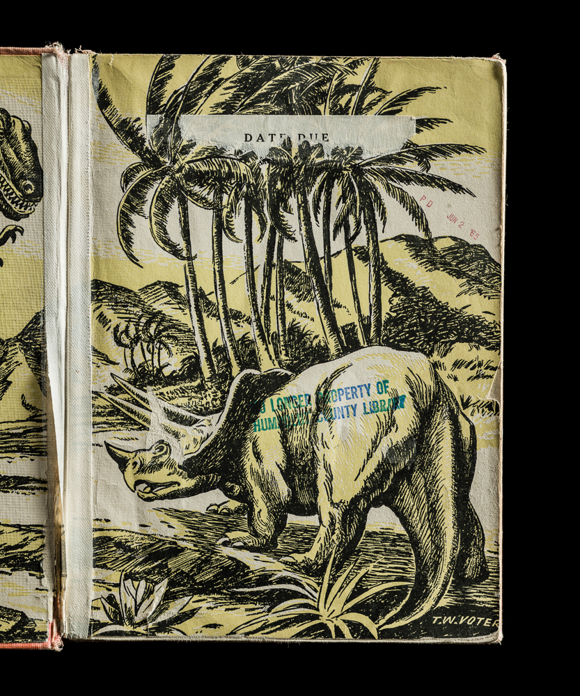 Kerry Mansfield, All About Dinosaurs, Interior Left Page. From the series Expired.