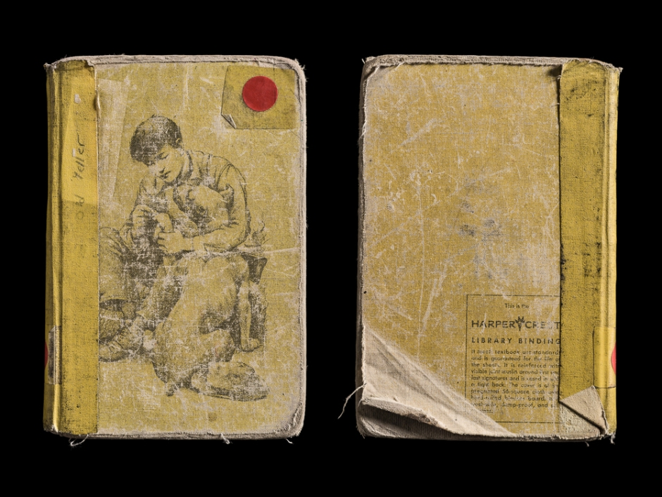 Kerry Mansfield, Old Yeller, Covers Front & Back. From the series Expired.